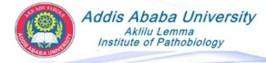 Logo ALIPB